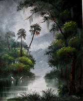 Misty Tropical Florida River duex