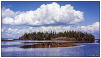 Wooded Island  off Atlantic Coast of Nova Scotia
