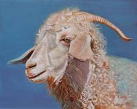 Original oil painting Angora goat