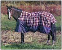 Horse in a Blanket