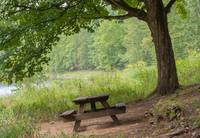 Picnic Bench on the river bank