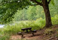 Picnic Bench on the river bank (WC)