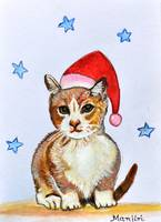 Christmas Cat kitten kitty feline red hat festive
