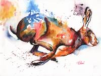Splash and Dash hare painting