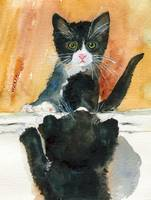 Black Kitten | CAT art