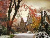 Winter Tudor