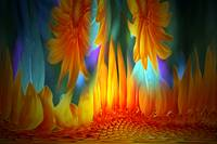 Sunflowers Afire