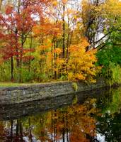 autumn over feeder canal