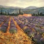 """""""Lavender in Haute Provence"""" by elenamaza"""