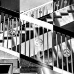"""""""Zebra Geometry"""" by TheEyesHaveIt"""