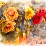 """Romantic Roses version 2"" by DavidBleakley"