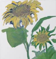 September Sunflowers