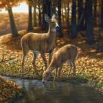 """""""Autumn Innocence I"""" by csforest"""