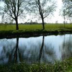 """River Chelmer"" by vladimere"