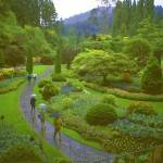 """Butchart Gardens in Rain, Victoria, BC, Canada."" by PriscillaTurner"