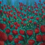 """Red Poppy Field"" by kerian"