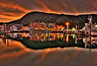 picton reflections