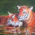"""Tigers"" by lizziefield"