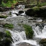 """""""Horton Creek"""" by RaymondPrax"""