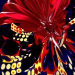 """""""Red Queen"""