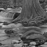 """Flowing Creek: Black and White"" by PaulHuchton"
