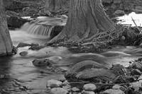 Flowing Creek: Black and White