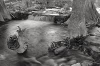 Creek Flowing 1: Black and White