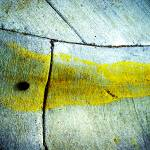 """""""curb yellow paint smear cement 7.7.07"""" by eyecontact"""