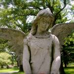 """Montrose Angel"" by joanndeasy"