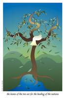 Olive Tree of Life Poster