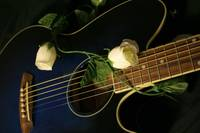 Guitar n Roses Color