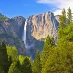 """""""Yosemite Falls in Spring"""" by cfu1"""