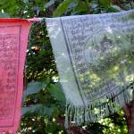 """prayer flags by m higgins"" by exigeante"