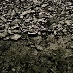 """""""Stone floor"""" by Mokedophoto"""