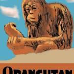 """Orangutan poster"" by graham700"