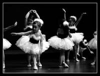 Little Beautiful Ballerinas