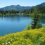 """On Golden Pond"" by PatriciaDanielPhotography"