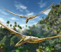 Pterosaurs Hunting