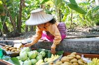 Thai Fruit Seller