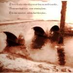 """burnside bridge"" by djune"
