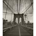 """""""The Bridge"""" by mvalcourt"""