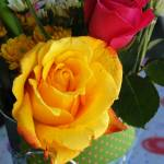 """""""Yellow Rose, My Favorite"""" by ctoby5"""