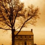 """Bleak House"" by manymuses"