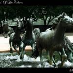 """Mustangs Of Las Colinas"" by SanketBakshi"