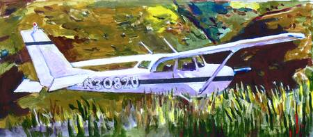 Cessna in the Grass - study