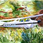 """Cessna in the Grass"" by Anno"