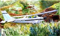 Cessna in the Grass