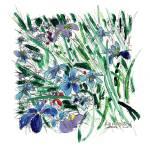 """Blue Iris in the Garden"" by RDRiccoboni"