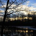 """The Great Swamp at Sunrise"" by snarkphoto"