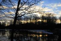 The Great Swamp at Sunrise